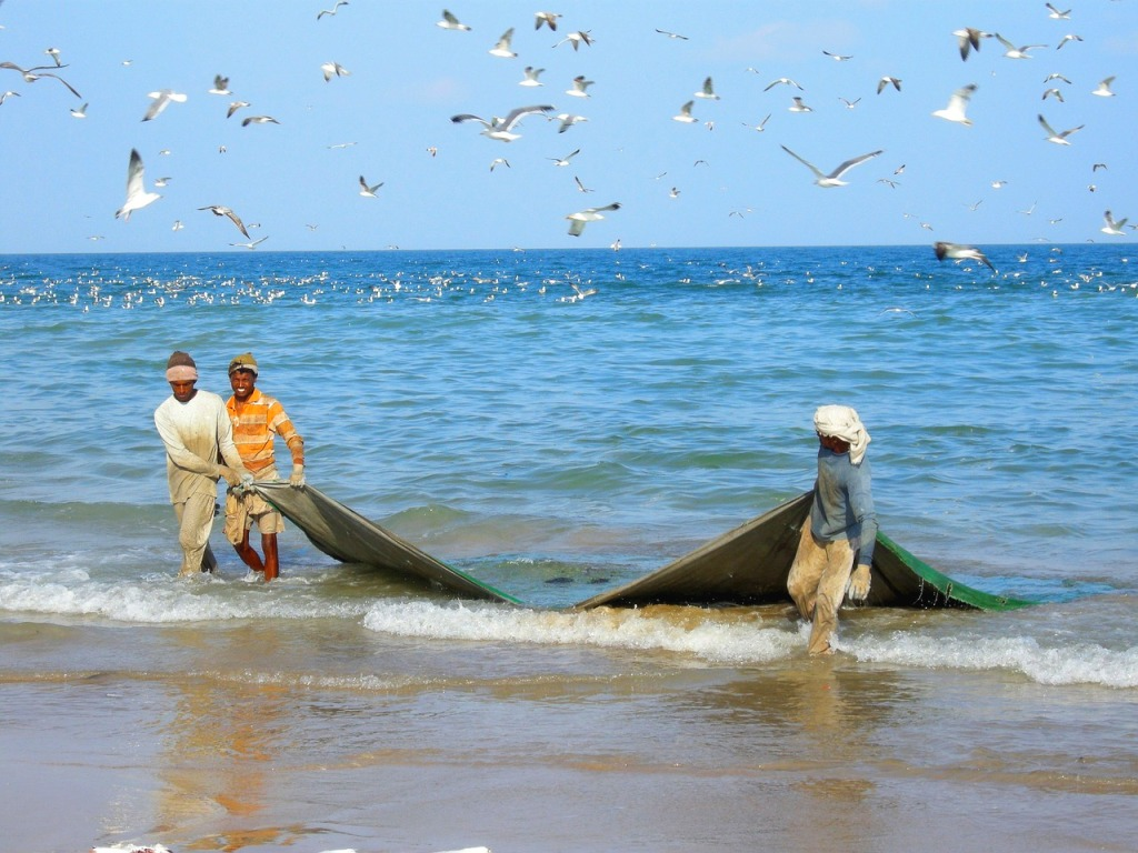 Fishermen on Sir Bani Yas Island